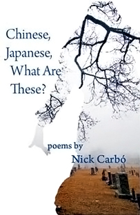 Nick Carbo - Chinese, Japanese, What Are These? Review on Fogged Clarity