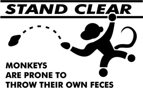monkeys throwing feces